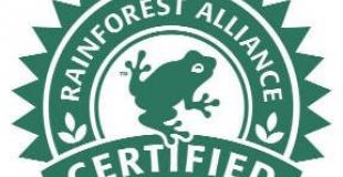 La certification du cacao pour sauvegarder la biodiversité